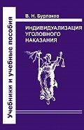 Владимир Бурлаков - Индивидуализация уголовного наказания. Закон, теория, судебная практика