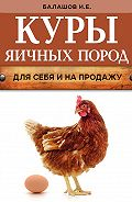 Иван Балашов - Куры яичных пород