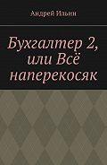 Андрей Ильин -Бухгалтер2, или Всё наперекосяк