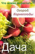 Илья Мельников - Огород. Корнеплоды. Что можно вырастить?