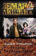 Владимир Стрельников -Простые оружные парни