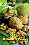 Андрей Марченко -Орехи в нашем саду