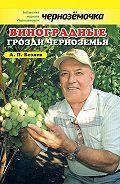 Анатолий Безяев - Виноградные грозди Черноземья