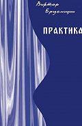 Виктор Брусницин -Практика