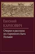 Евгений Карнович - Патриотка
