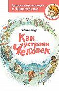 Елена Качур -Как устроен человек
