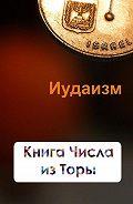 Илья Мельников -Книга Числа из Торы