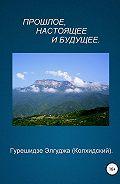Элгуджа (Колхидский) Гурешидзе -Прошлое, настоящее и будущее