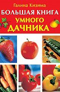 Галина Кизима - Большая книга умного дачника