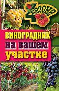Екатерина Васильевна Животовская -Виноградник на вашем участке
