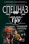 Михаил Нестеров -Позывной «Пантера»