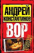 Андрей Константинов - Вор