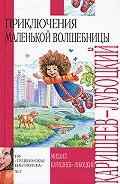 Михаил Александрович Каришнев-Лубоцкий -Почти кругосветное путешествие