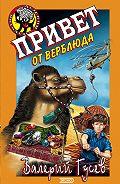 Валерий Гусев -Привет от верблюда