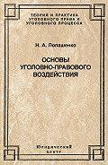 Наталья Лопашенко - Основы уголовно-правового воздействия