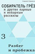 Сергей Саканский - Разбег и пробежка (сборник)