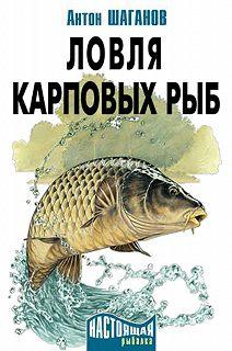 Ловля карповых рыб