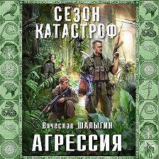 Вячеслав Шалыгин - Агрессия