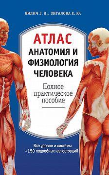 Габриэль Билич - Атлас: анатомия и физиология человека. Полное практическое пособие