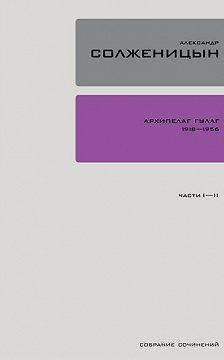 Александр Солженицын - Архипелаг ГУЛАГ. Книга 1