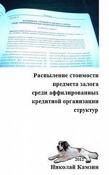Николай Камзин - Распыление стоимости предмета залога среди аффилированных кредитной организации структур