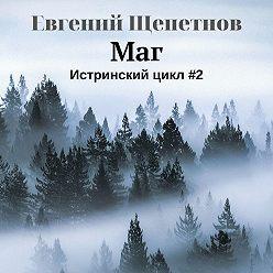 Евгений Щепетнов - Маг