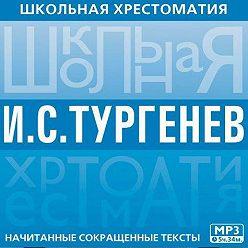 Иван Тургенев - Школьная хрестоматия. Отцы и дети