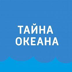 Павел Картаев - Морские беспозвоночные