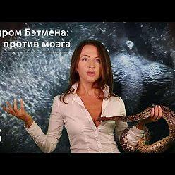 Евгения Тимонова - Синдром Бэтмена: яйца против мозга