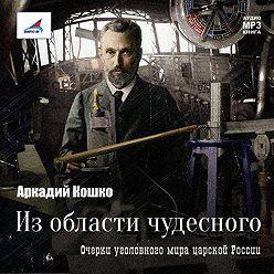 Аркадий Кошко - Из области чудесного