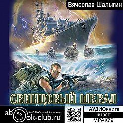 Вячеслав Шалыгин - Свинцовый шквал