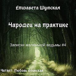 Елизавета Шумская - Чародеи на практике