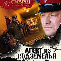 Александр Тамоников - Агент из подземелья
