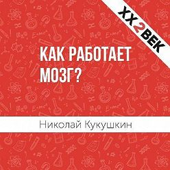 Николай Кукушкин - Как работает мозг?