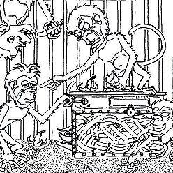 Дмитрий Гайдук - Про обезьян