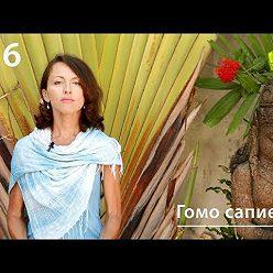Евгения Тимонова - Гомо сапиенс: причины и поводы гомосексуального поведения