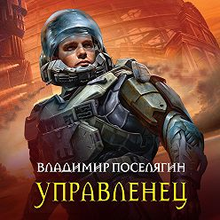 Владимир Поселягин - Управленец