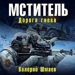 Валерий Шмаев - Мститель. Дорога гнева