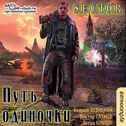 Андрей Левицкий - Путь одиночки