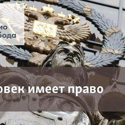 Наталья Джанполадова - Миссия (не?)выполнима. Что делать, если вы нашли животное в беде - 03 ноября, 2020