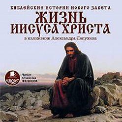 Александр Лопухин - Библейские истории Нового Завета: Жизнь Иисуса Христа