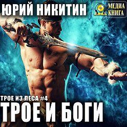 Юрий Никитин - Трое и боги