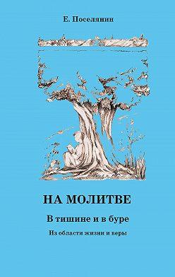 Евгений Поселянин - На молитве. В тишине и в буре