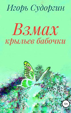 Игорь Судоргин - Взмах крыльев бабочки