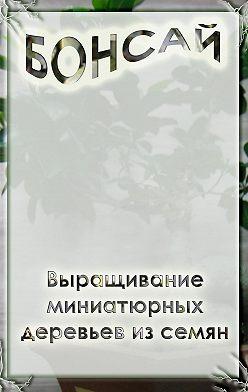 Илья Мельников - Выращивание миниатюрных деревьев из семян