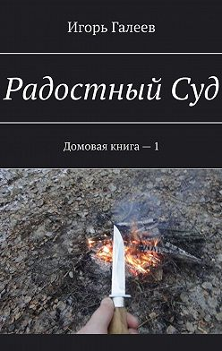 Игорь Галеев - РадостныйСуд. Домовая книга –1