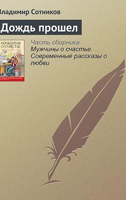Владимир Сотников - Дождь прошел