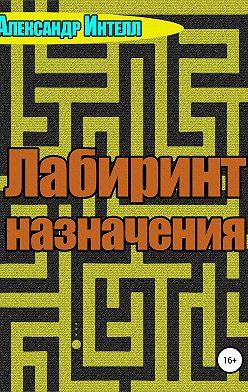 Александр Интелл - Лабиринт назначения