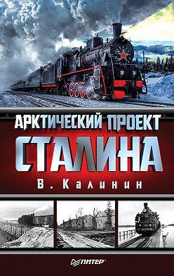 Вячеслав Калинин - Арктический проект Сталина