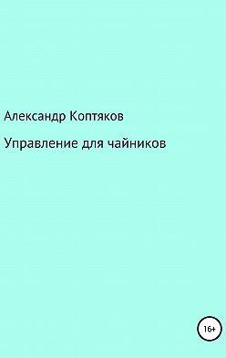 Александр Коптяков - Управление для чайников